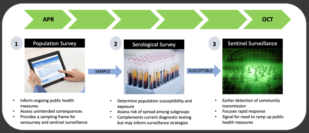 Timeline photograph showing three stages of research: population survey beginning in April, serology survey, and sentinel surveillance